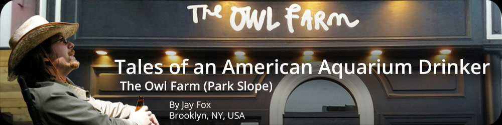 Tales of an American Aquarium Drinker - The Owl Farm, Park Slope
